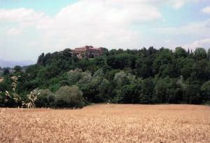 麦畑から見た丘の上のチビテッラ城