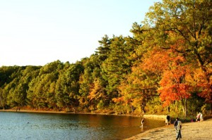 ボストンの紅葉
